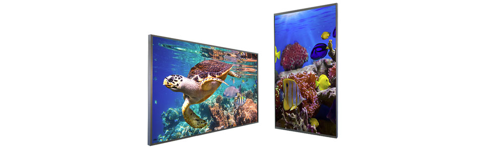 Toshiba launches the TD-U UltraSeries of 4K UHD displays aimed at professionals
