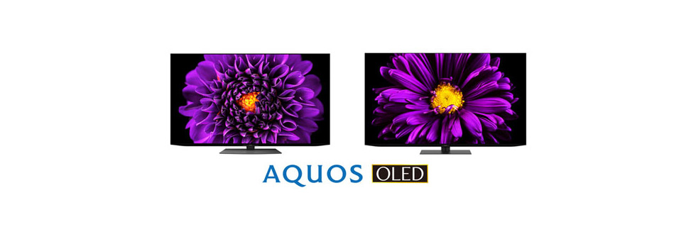 Sharp Aquos DS1 and DQ1 OLED 4K TVs go official in Japan
